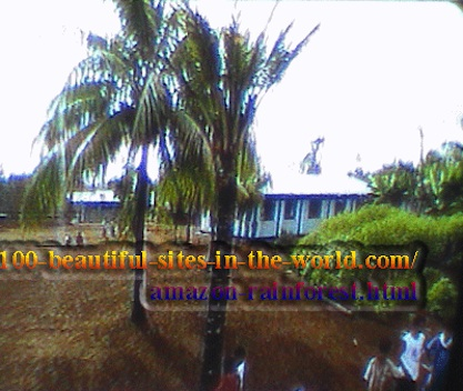 Amazonian Beautiful Images: Amazonian village inside the rainforest.