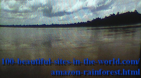 Beautiful Amazonian Pictures: Amazonian Rainforest at Evening.