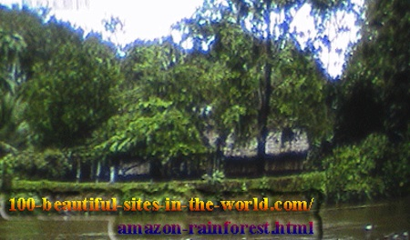 Beautiful Amazonian Pictures: Amazonian Village in the Amazon Rainforest (Amazonia).