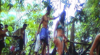 Beautiful Amazonian Tableaux: Time enjoyment on the Amazon.