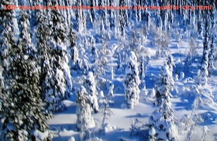 Beautiful Photos: The Snow Covering the Trees.