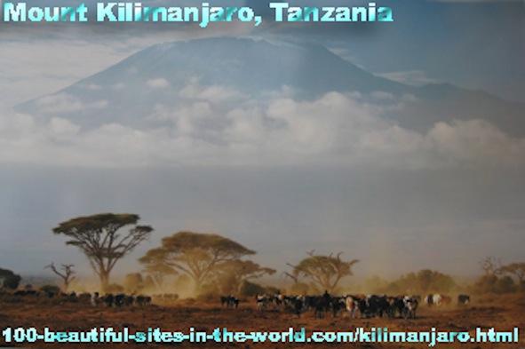 Kilimanjaro Mountain, Serengeti, Masai Mara, Wachagga, Savannah, Tanzania, Kenya