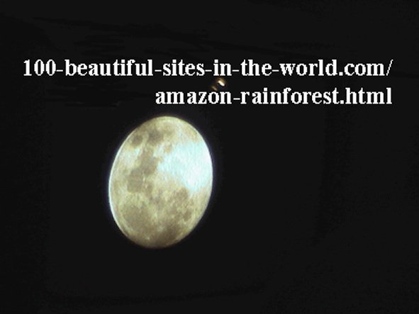 Beautiful Amazonian Photos: The beautiful full moon of the Amazon.
