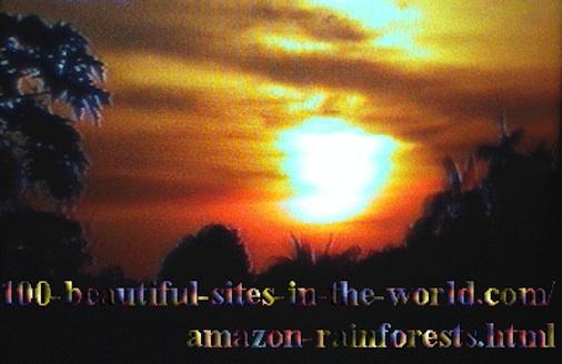 Beautiful Amazonian Scenes: The Beautiful Colors of the Amazonian Sunset.