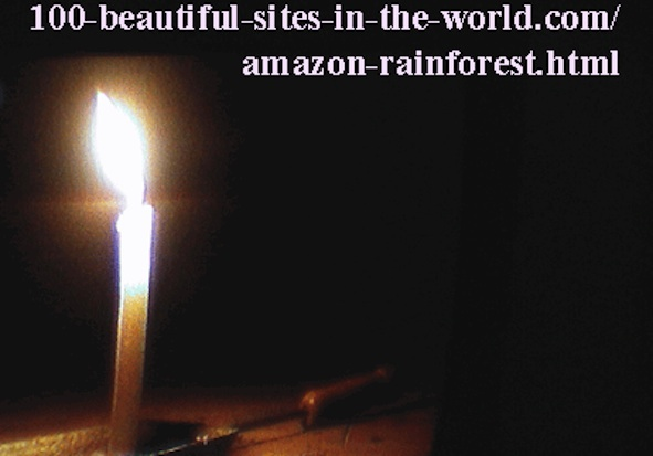 Beautiful Amazonian Tableaux: Beautiful lights of a candle in the darkness.