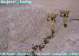 Gujarat State, India, Gandhi's Birthplace, Salt and Cotton Producer